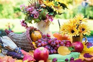 Outdoor Thanksgiving spread with a cornucopia, fruit, flowers, and maize.